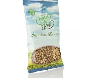 Cilantro-en-semillas-agricultura-ecológica-Herbes-del-Moli-300x271