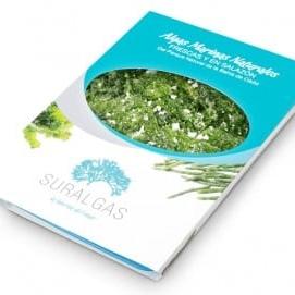 seaweed-suralgas-sealettuce-300x271