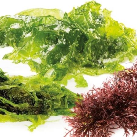 Mixtura de algas marinas en salazón