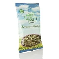 alfalfa-herbes-moli