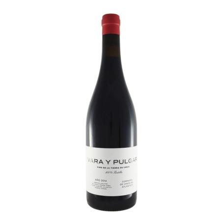 Vino tinto Vara Y Pulgar, de la Tierra de Cádiz