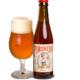 Cerveza artesana La Piñonera Pale Ale