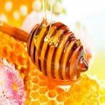 Miel et pollen écologiques