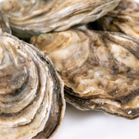 Acheter Huîtres d'estuaire 20 unités - Del'Aqua Delicias del Mar